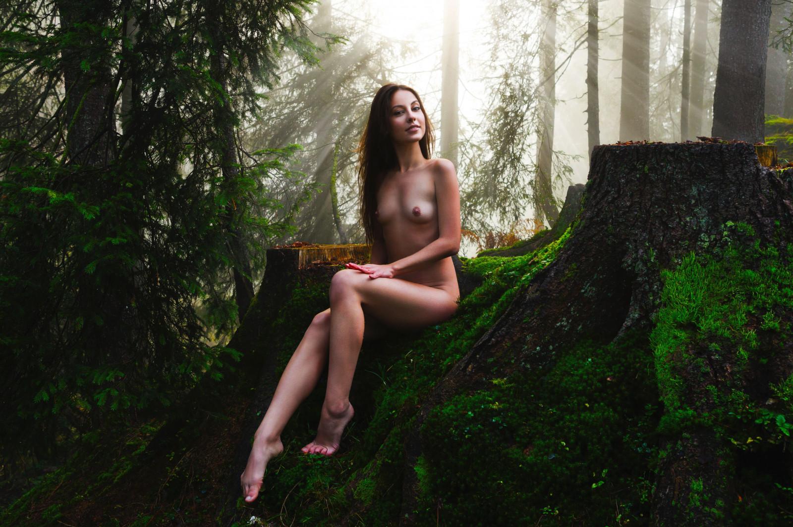 смотреть эротику в лесу надо