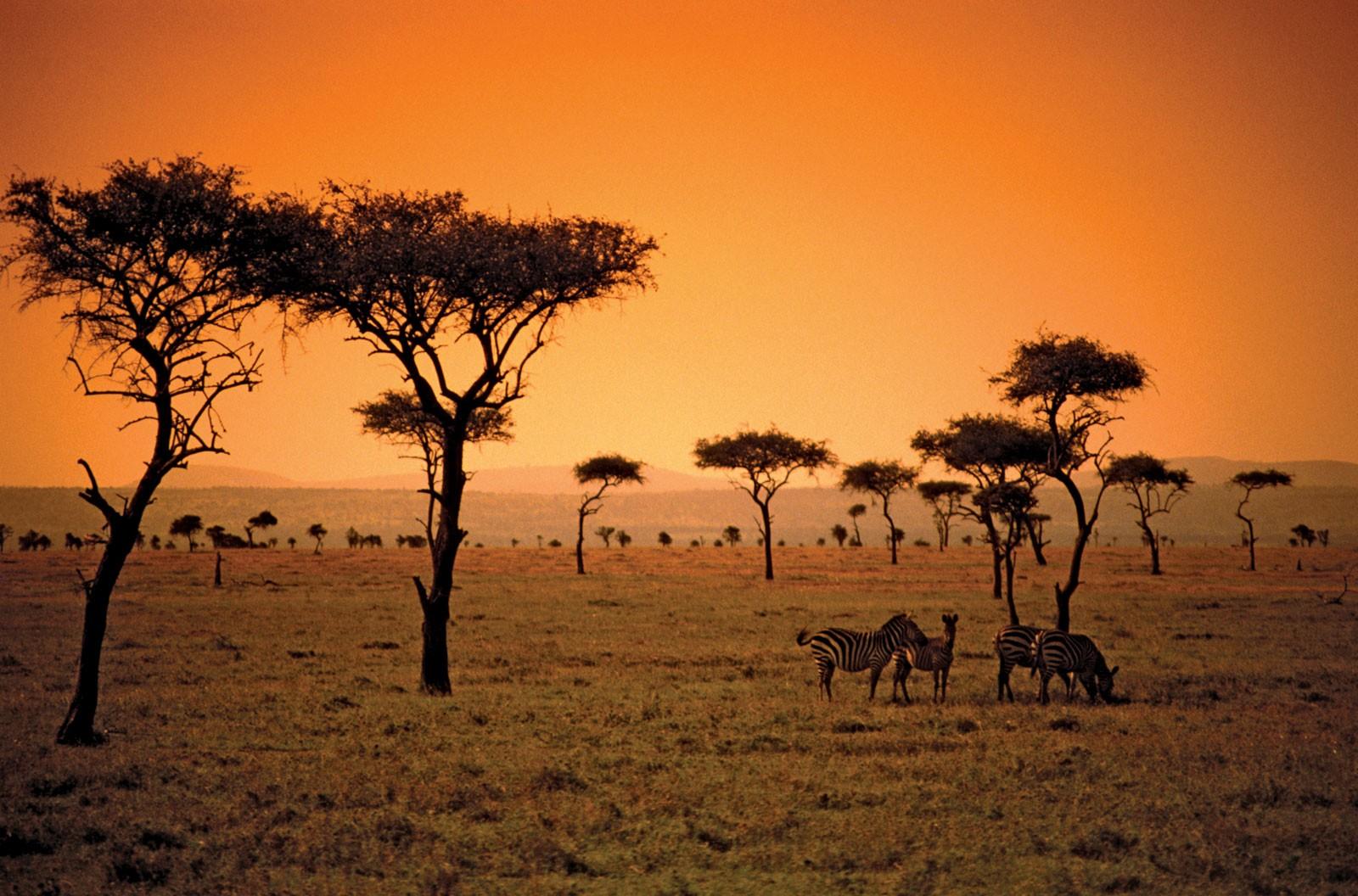 условиям оно африка территория картинки прихожей