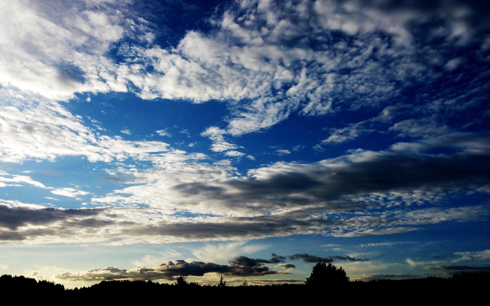что картинки в качестве небо весенних цветов