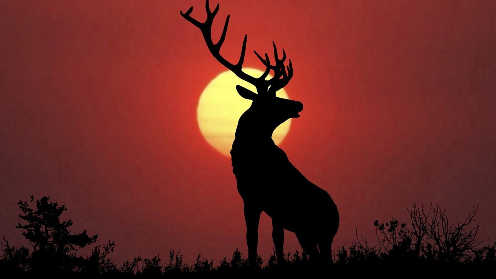 Reindeer Winter Acrylic Painting