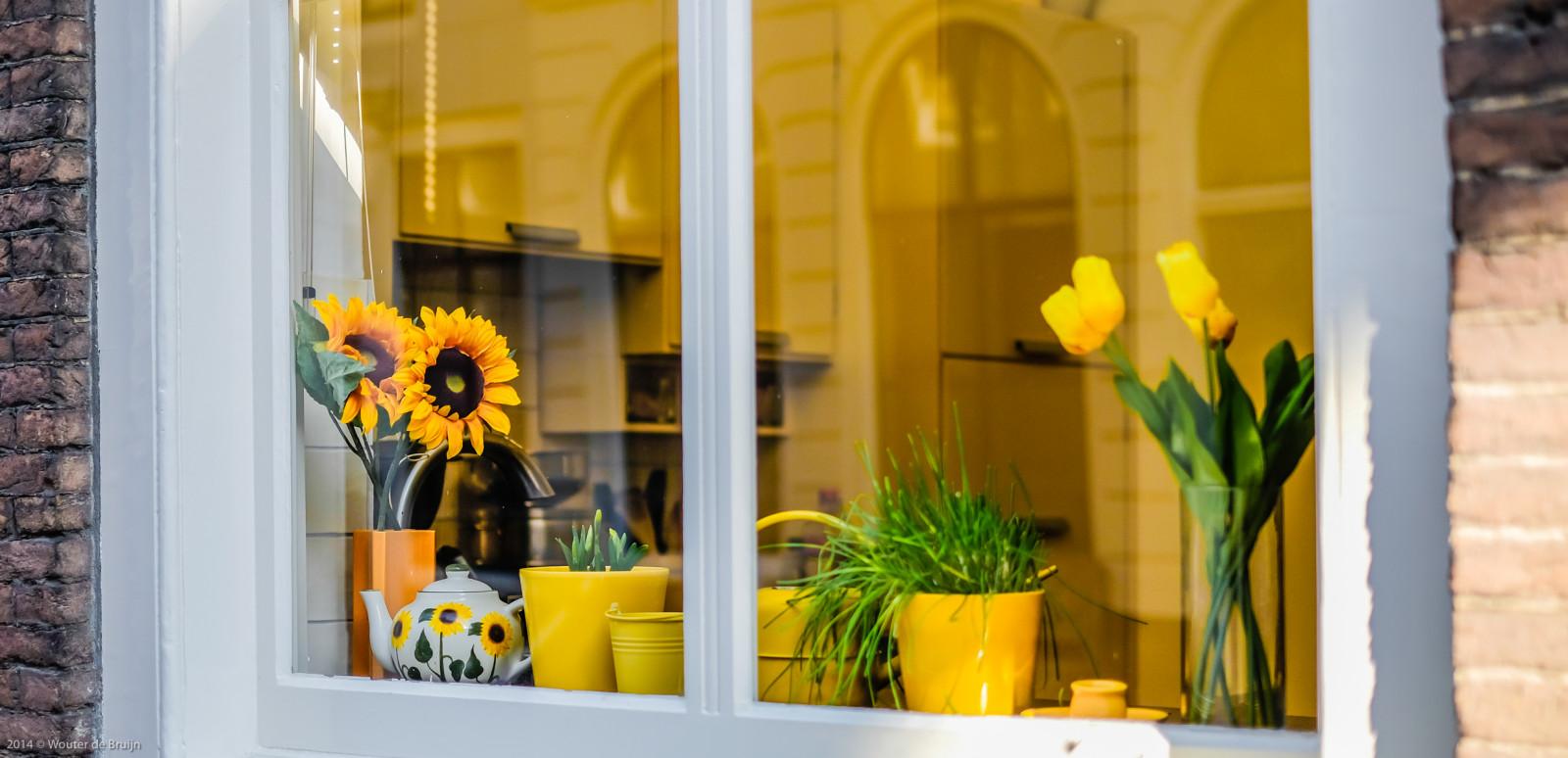Hintergrundbilder : Fenster, Pflanzen, Tulpen, Gelb, Küche, Rahmen ...
