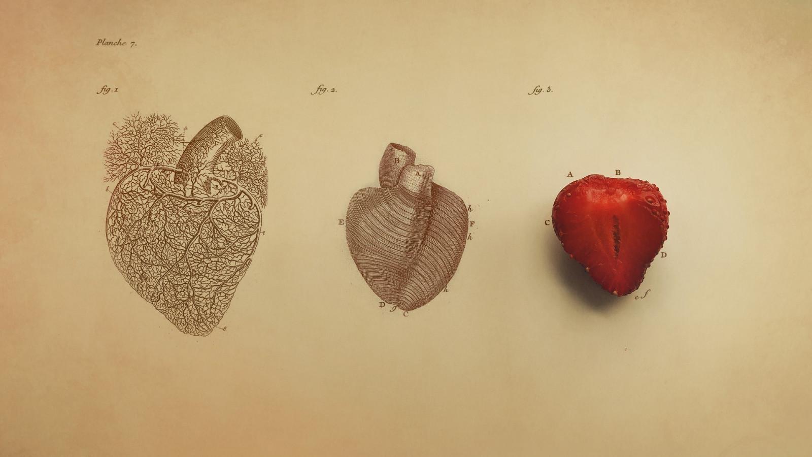 Wallpaper Gambar Jantung Merah Seni Warna Mata Tangan Hati