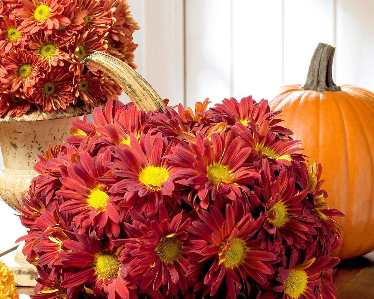 Осенние цветы картинки на рабочий стол самые красивые, девушке про любовь