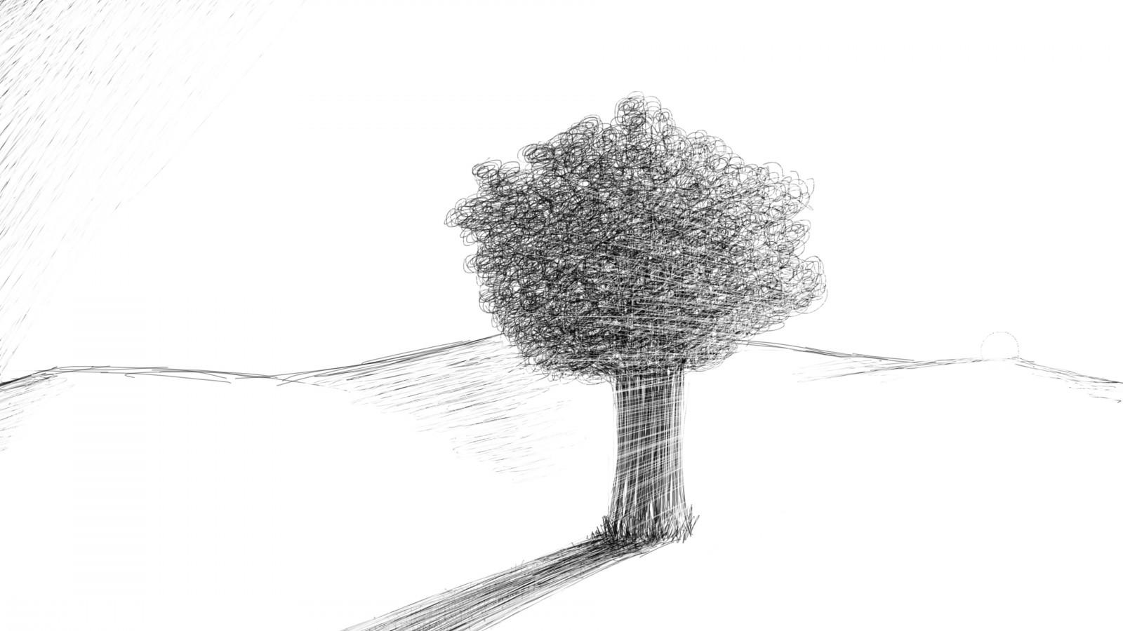 Pohon pemandangan gambar ilustrasi minimalis karya seni cabang sketsa pensil pohon daun tangan garis sketsa ranting