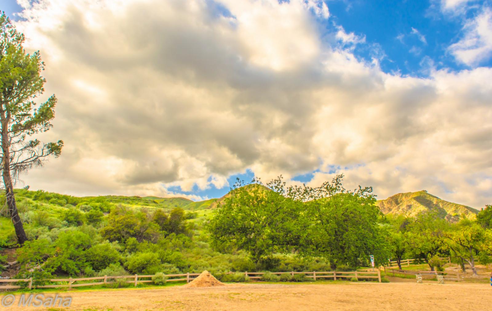 Wallpaper sky cloud nature grassland tree vegetation daytime field ecosystem meadow - Highland park wallpaper ...