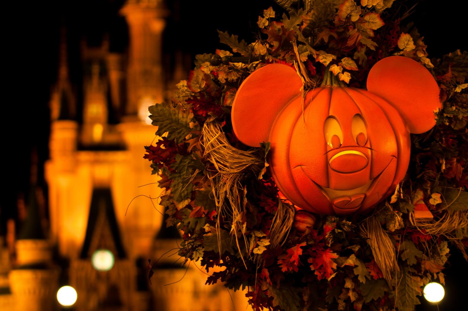 Sfondi illuminazione halloween notte tradizione lanterna