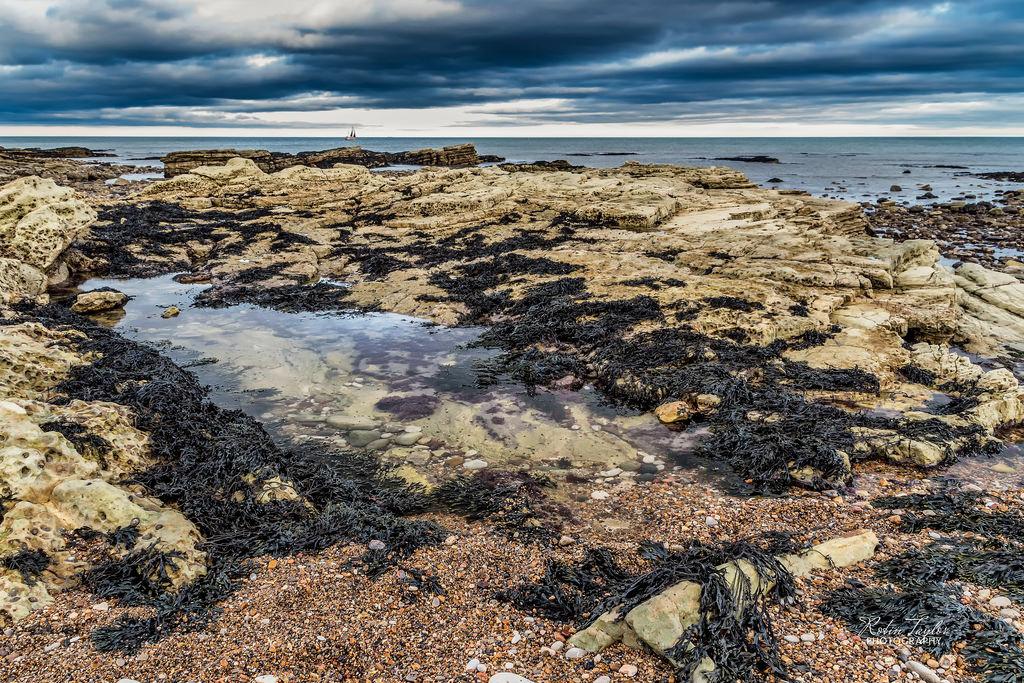 Sea Seascape Seaandsand Water Coast Whitburn Sky Clouds Ocean Rockpool Rocks Sand Robintaylorphotography Seawed Contrast Light