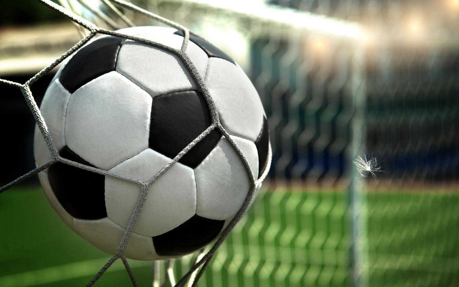 Gol fútbol estadio pelota rueda red pluma fútbol jugador jugador de fútbol equipo deportivo complejo deportivo Estadio específico de fútbol