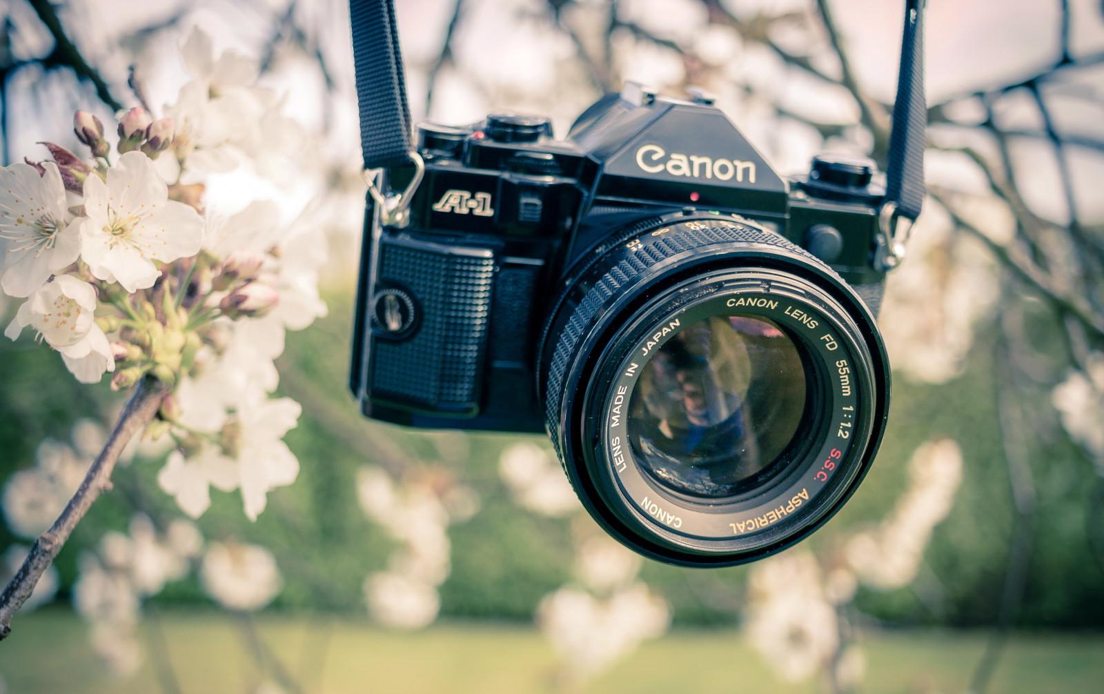 фотосъемка на зеркальный фотоаппарат при солнце