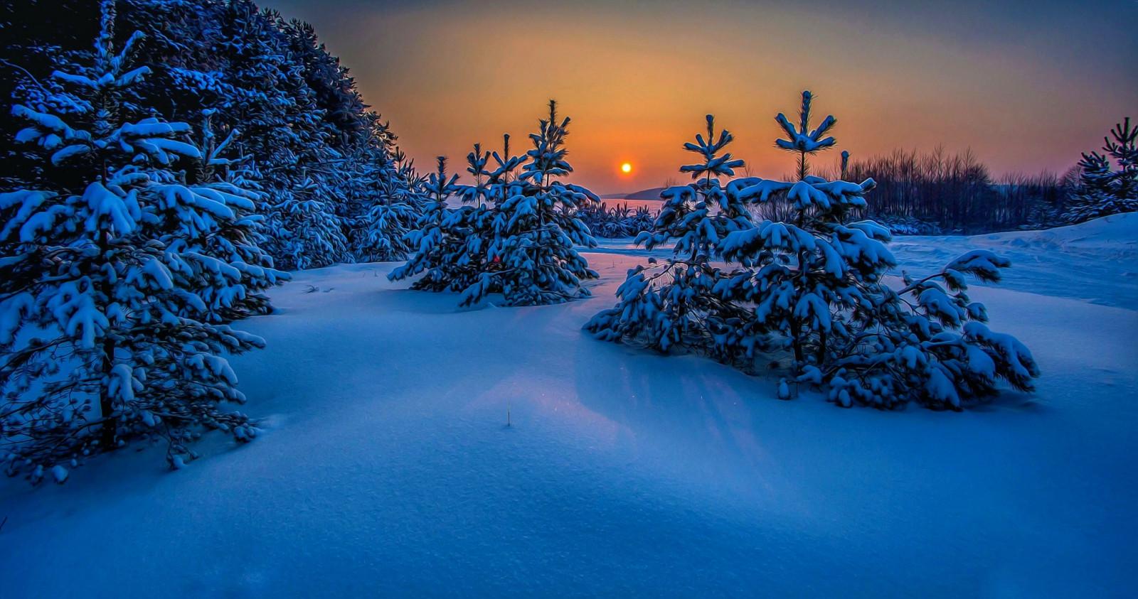 Красивые зимние пейзажи фото известных фотографов муж олег