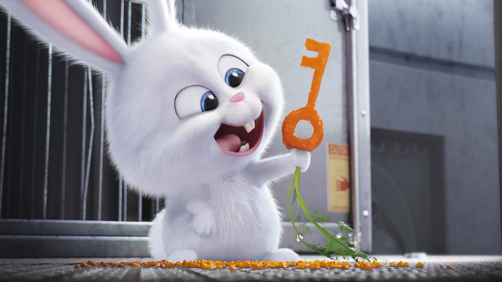 デスクトップ壁紙 白 ネコ 映画 ペットの秘密の生活 ぬいぐるみ
