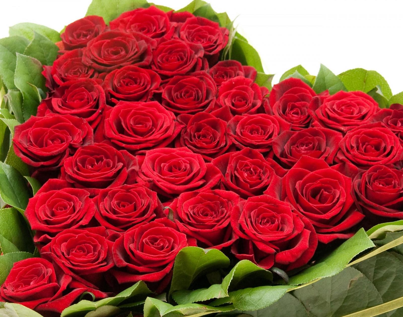 Красивые открытки с розами фото, днем рождения василий