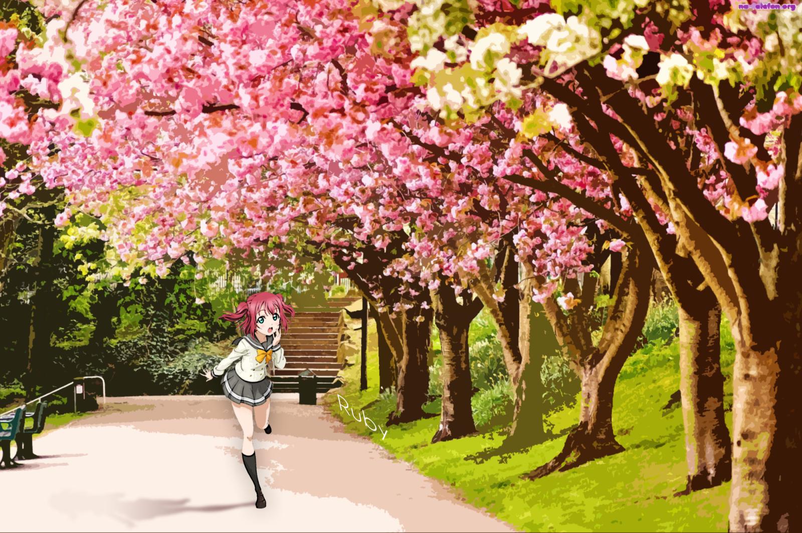 Wallpaper : Love Live, branch, cherry blossom, spring ...