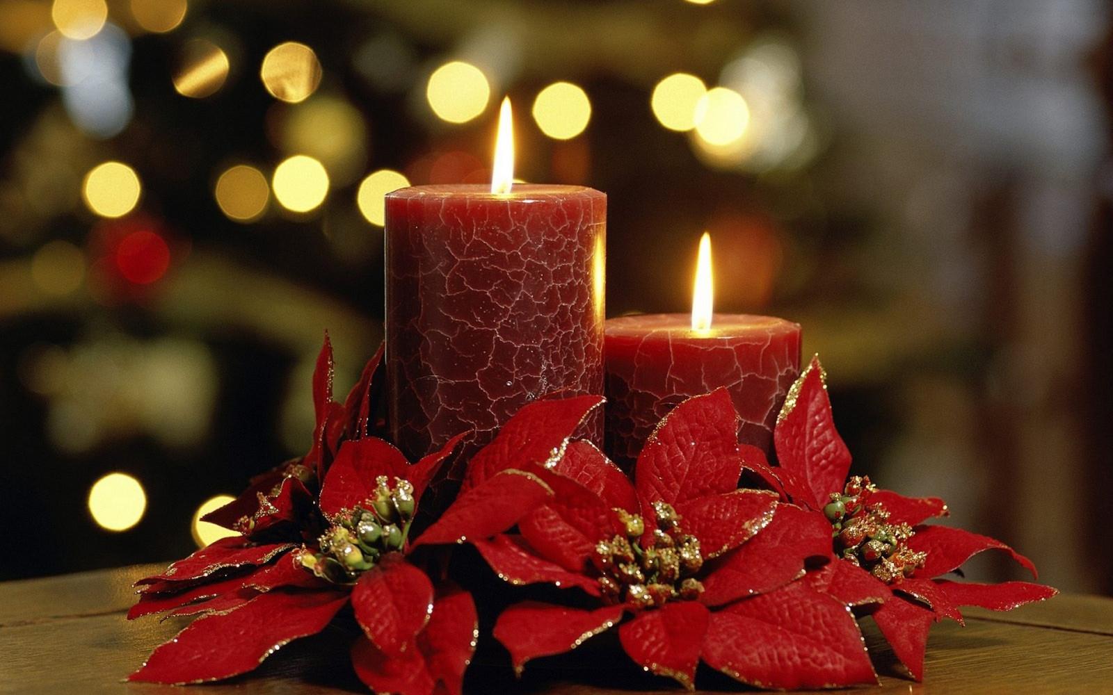 Fond D écran Vacances De Noël: Fond D'écran : Fleurs, Rouge, Bougies, Vacances, L'automne