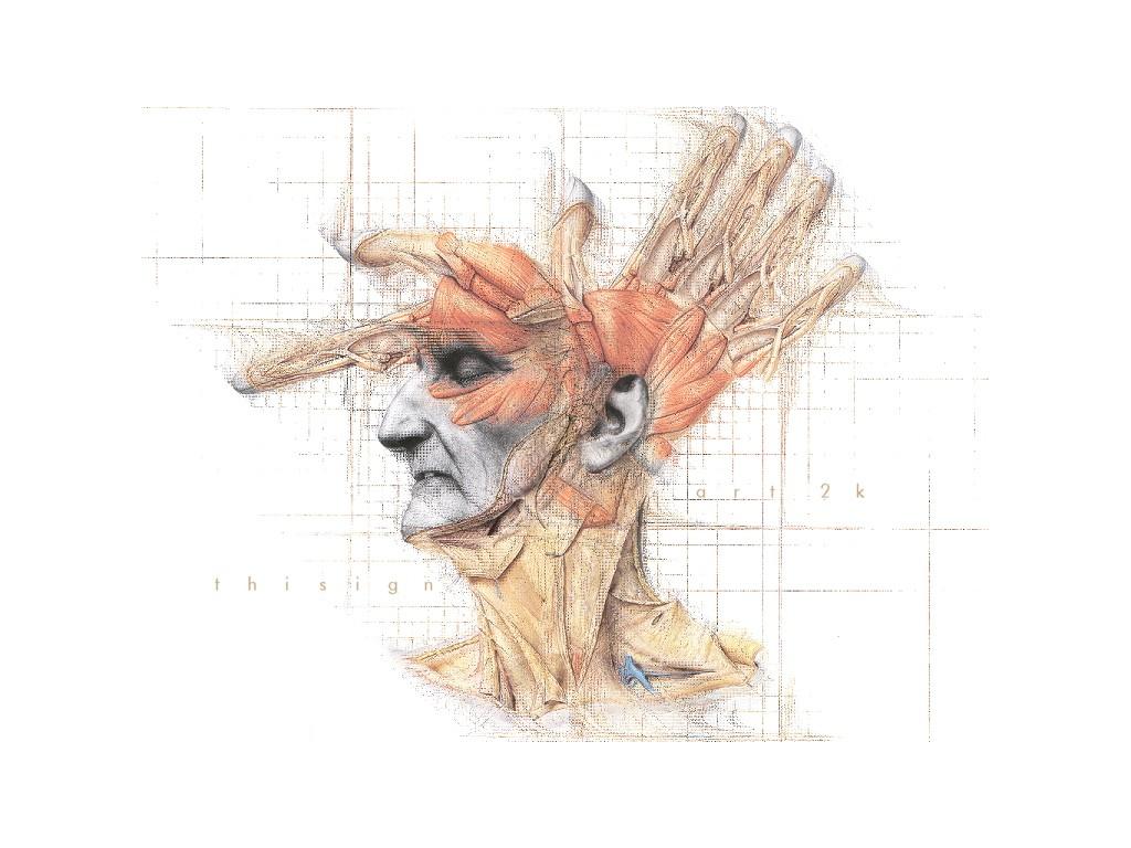 Hintergrundbilder : Zeichnung, Illustration, Karikatur, Kopf ...