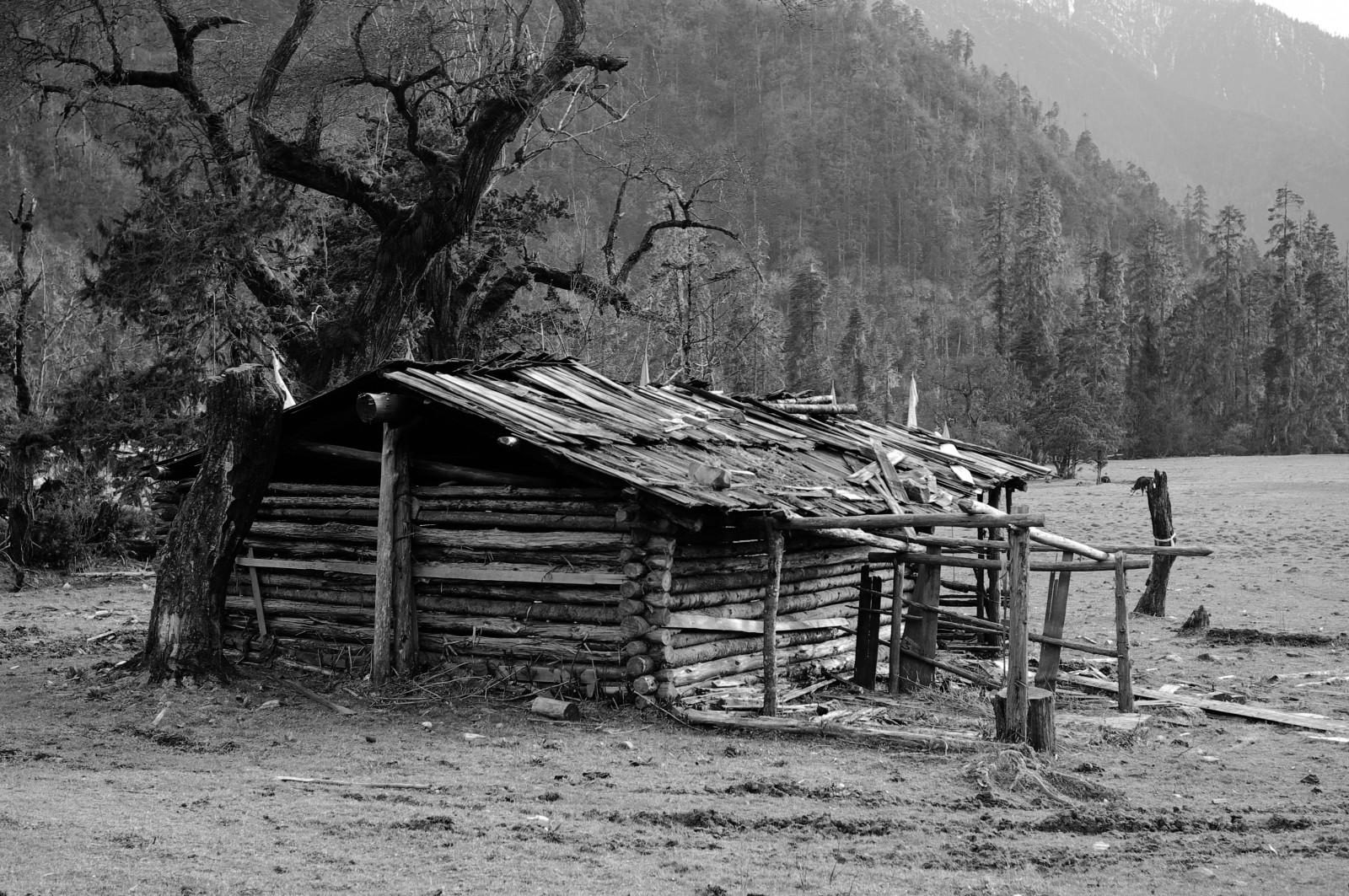 Fond d 39 cran paysage monochrome hiver bois maison for Agrandissement maison zone rurale