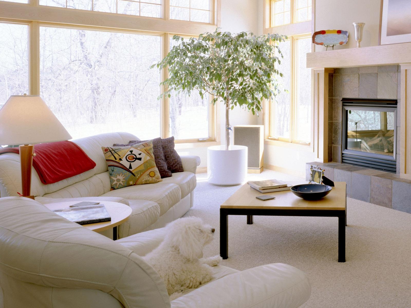 Fenster Zimmer Tabelle Fernseher Innenarchitektur Htte Immobilien Sofa Entwurf Stock Zuhause Wohnung Eigentumswohnung Mbel Komfort Kissen