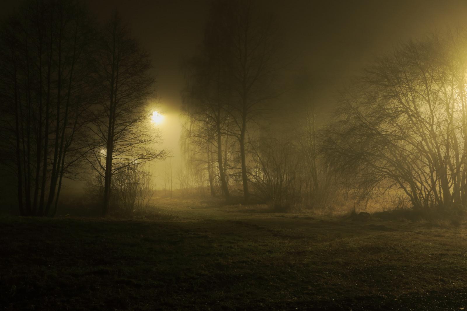 Как сделать фото ночью с телефона сорт