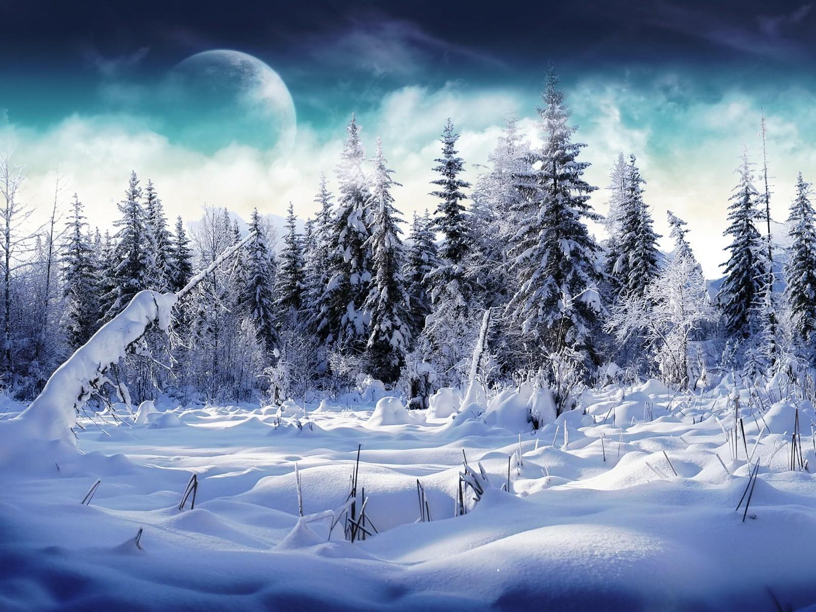 Fond D Ecran Lumiere Du Soleil Paysage Foret La Nature Ciel