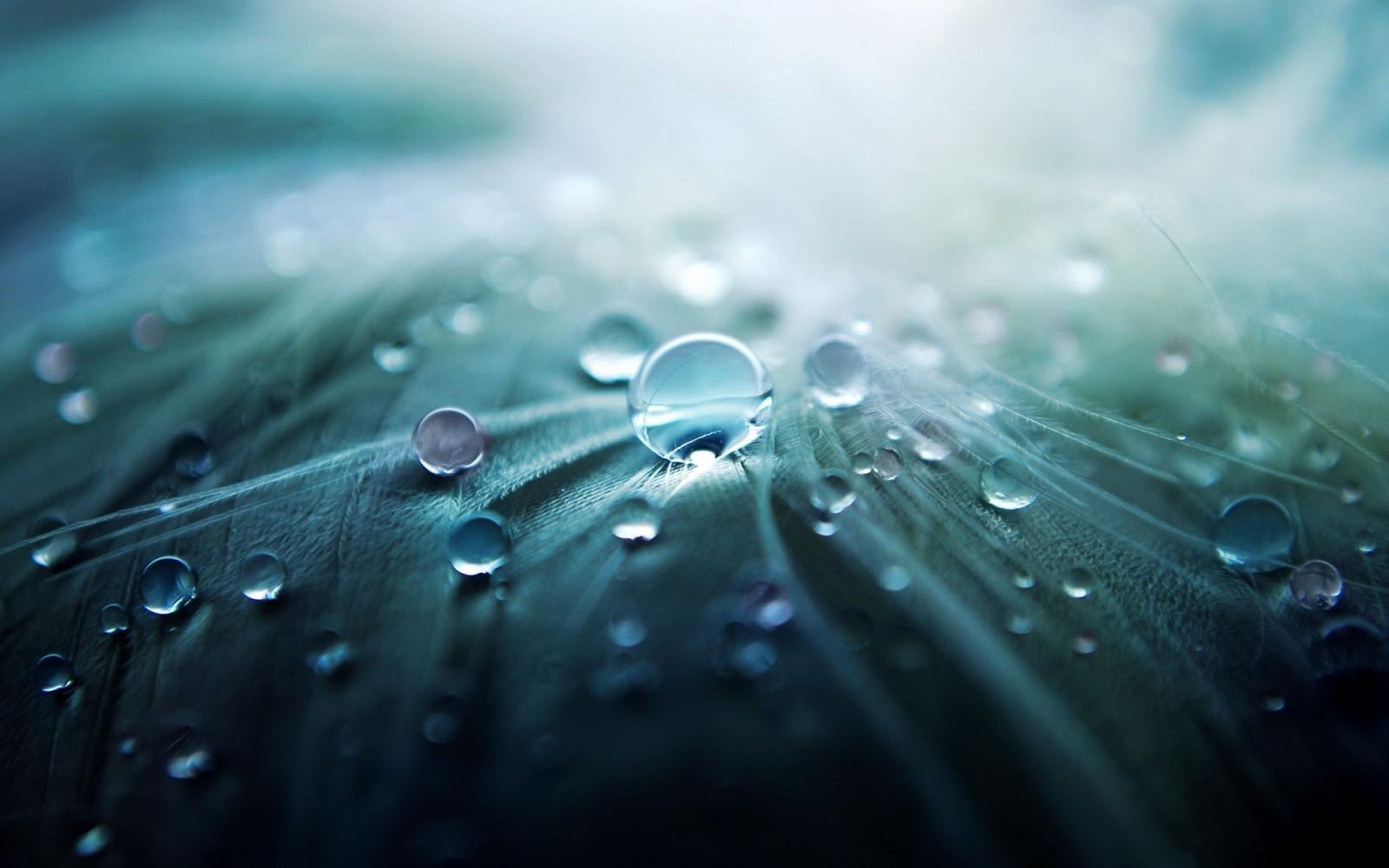 воды капельки картинки красивые