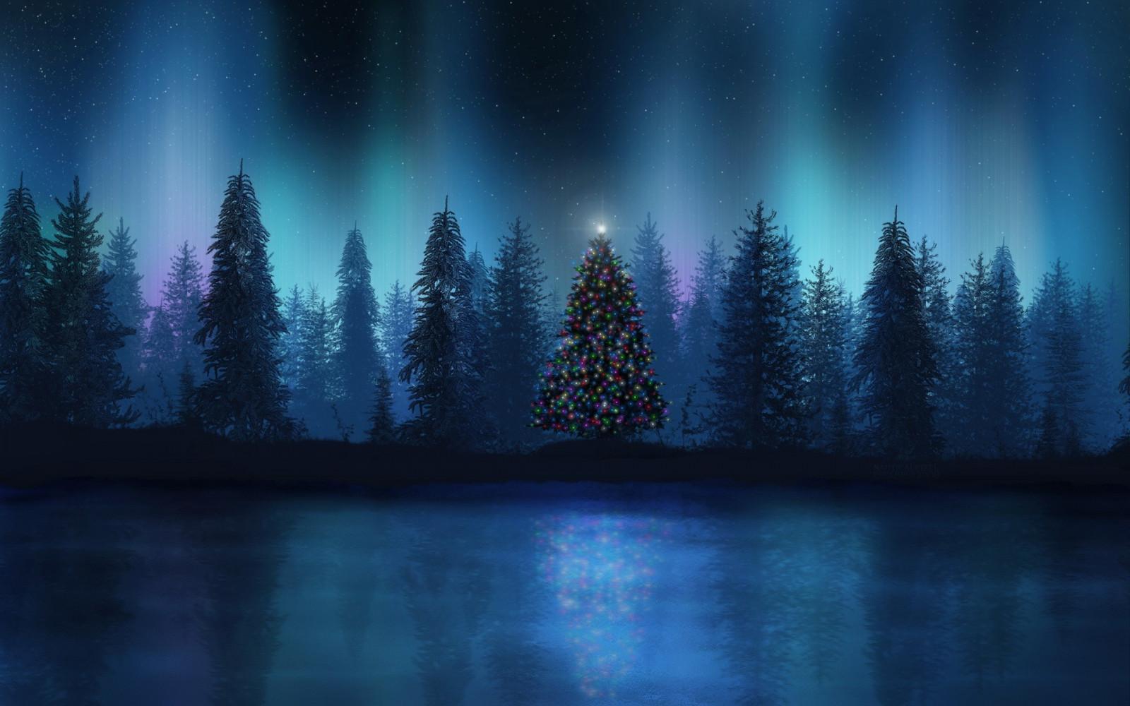 Hintergrundbilder : Landschaft, Wald, Nacht-, Betrachtung, Aurorae ...