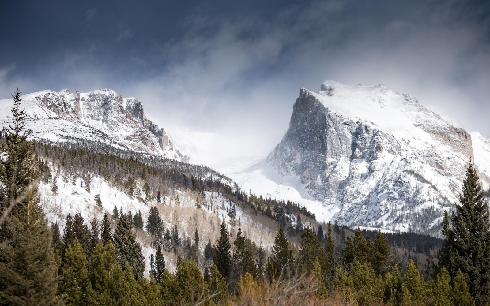 Wallpaper landscape forest nature snow winter mountain pass wilderness alps summit - 5120x3200 resolution ...