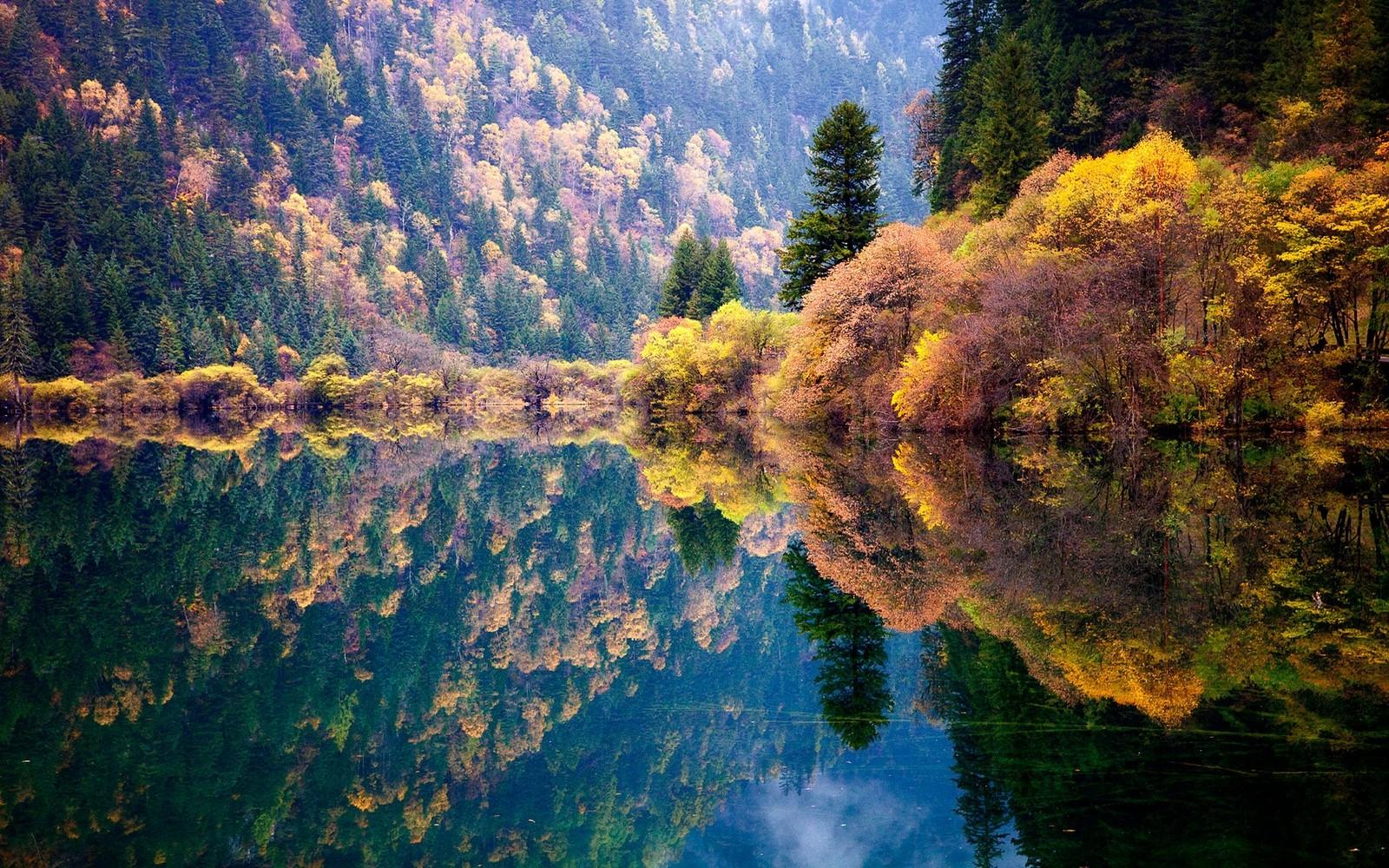 Fond d'écran : lumière du soleil, des arbres, paysage, Coloré, forêt, tomber, Montagnes, Chine ...