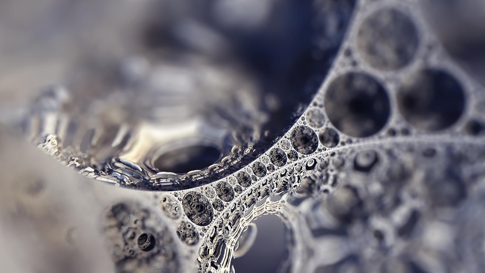 monocromo abstracto agua invierno fotografía rama hielo escarcha Fractal borroso plata Rocío Congelación hoja flor soltar joyería en blanco y negro Fotografía monocroma Accesorio de moda de cerca Fotografía macro