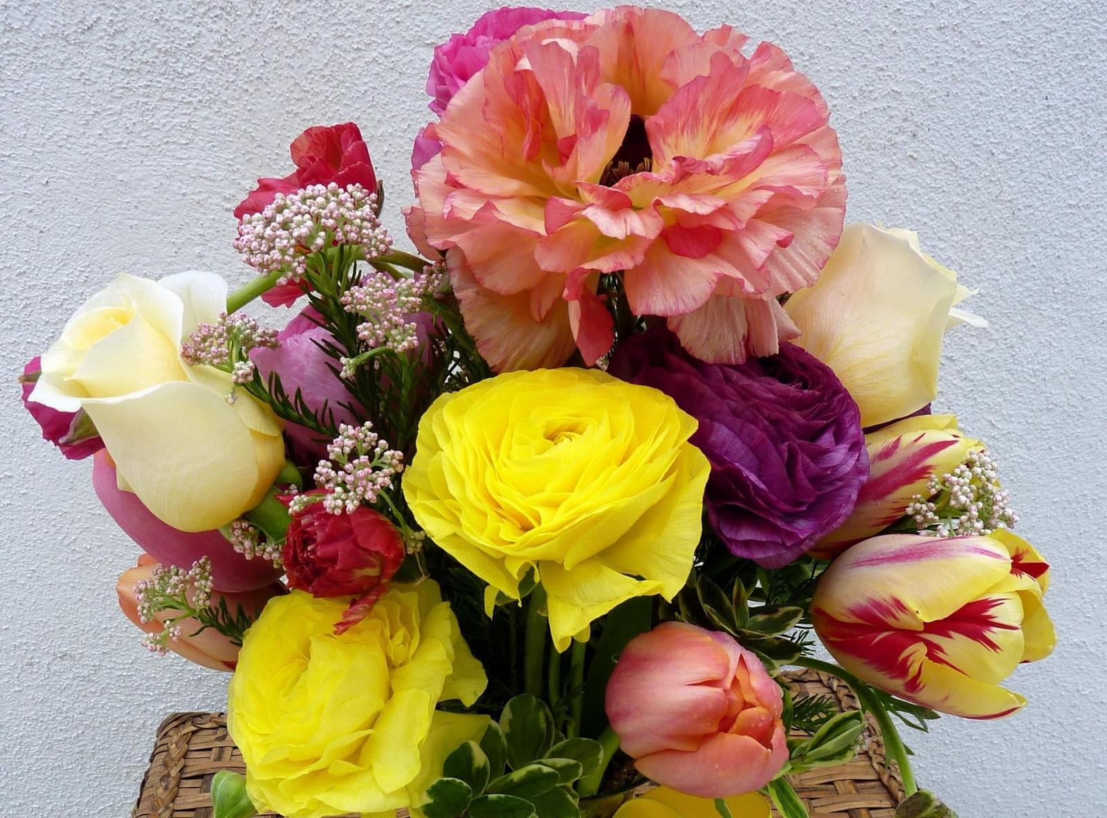 Цветы картинки роза тюльпаны