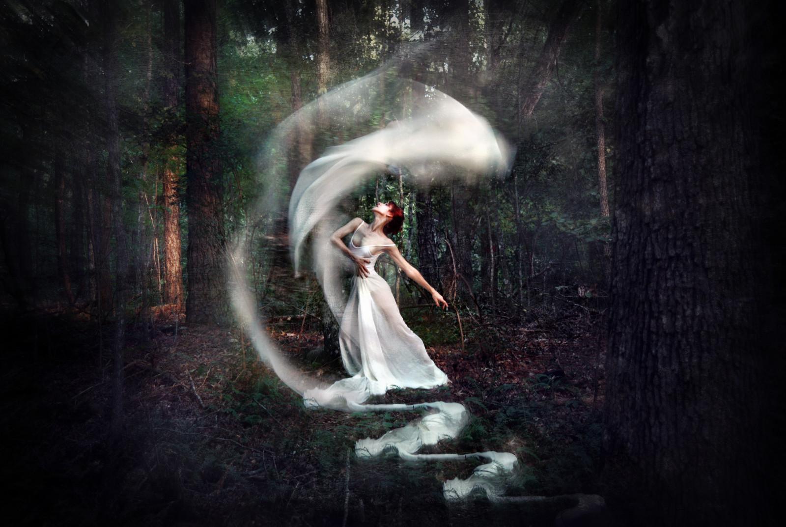 cây rừng trắng Nước thiên nhiên khiêu vũ nhiếp ảnh Phát sáng tối Hoàng hôn vũ công Muse cây con gái gỗ ảnh chụp bóng tối váy trắng Hình nền máy tính Lễ đặc tính của nước Hiện tượng Nữ vũ công Innermusic Nữ tính Say đắm Glowingwhitecloth stock photography flash photography