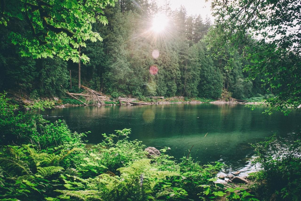 Fond d'écran : paysage, jardin, Lac, eau, la nature, réflexion, vert, rivière, étang, jungle ...