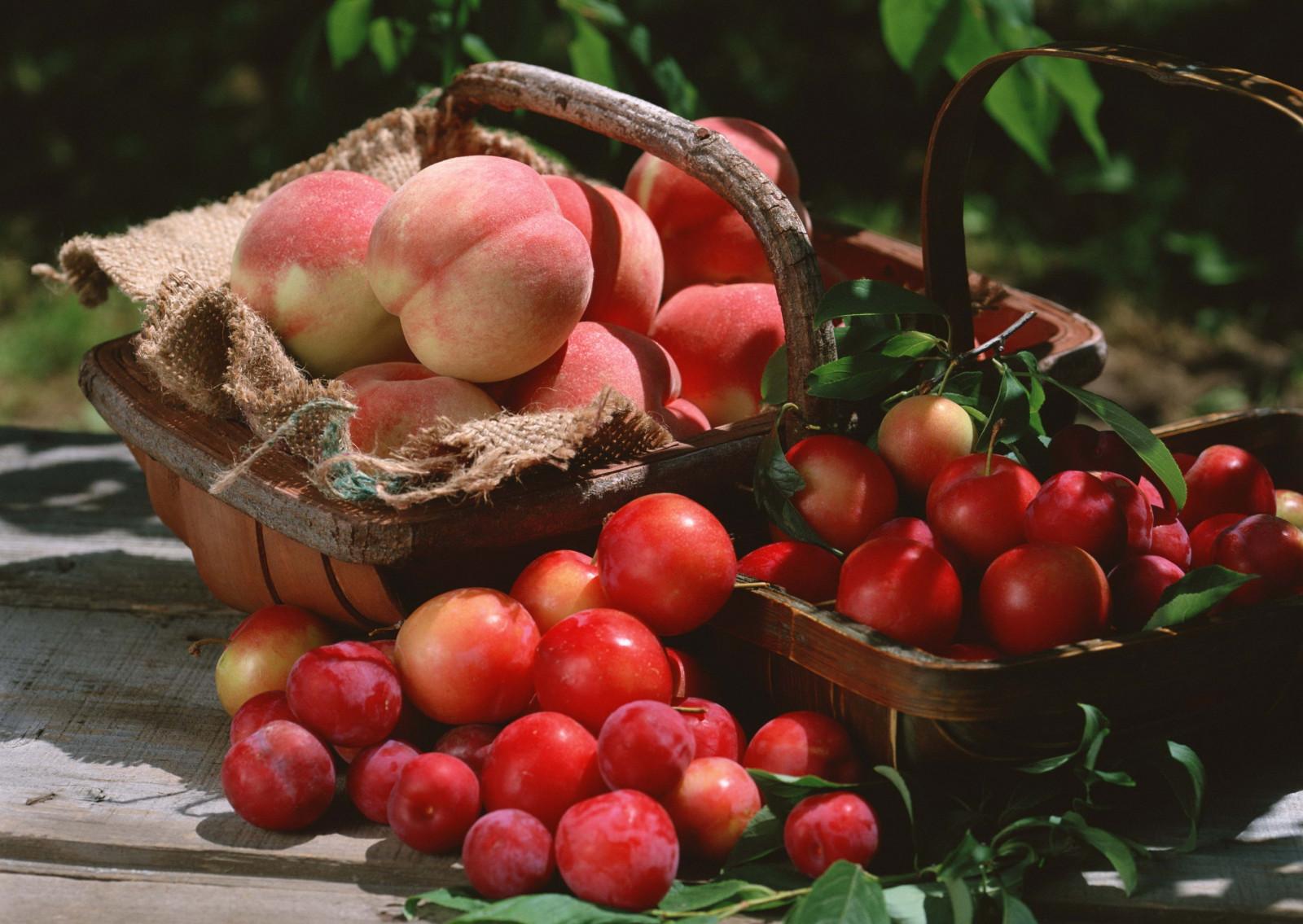 hintergrundbilder lebensmittel rot frucht pfirsich korb apfel blume ernte pflaume. Black Bedroom Furniture Sets. Home Design Ideas