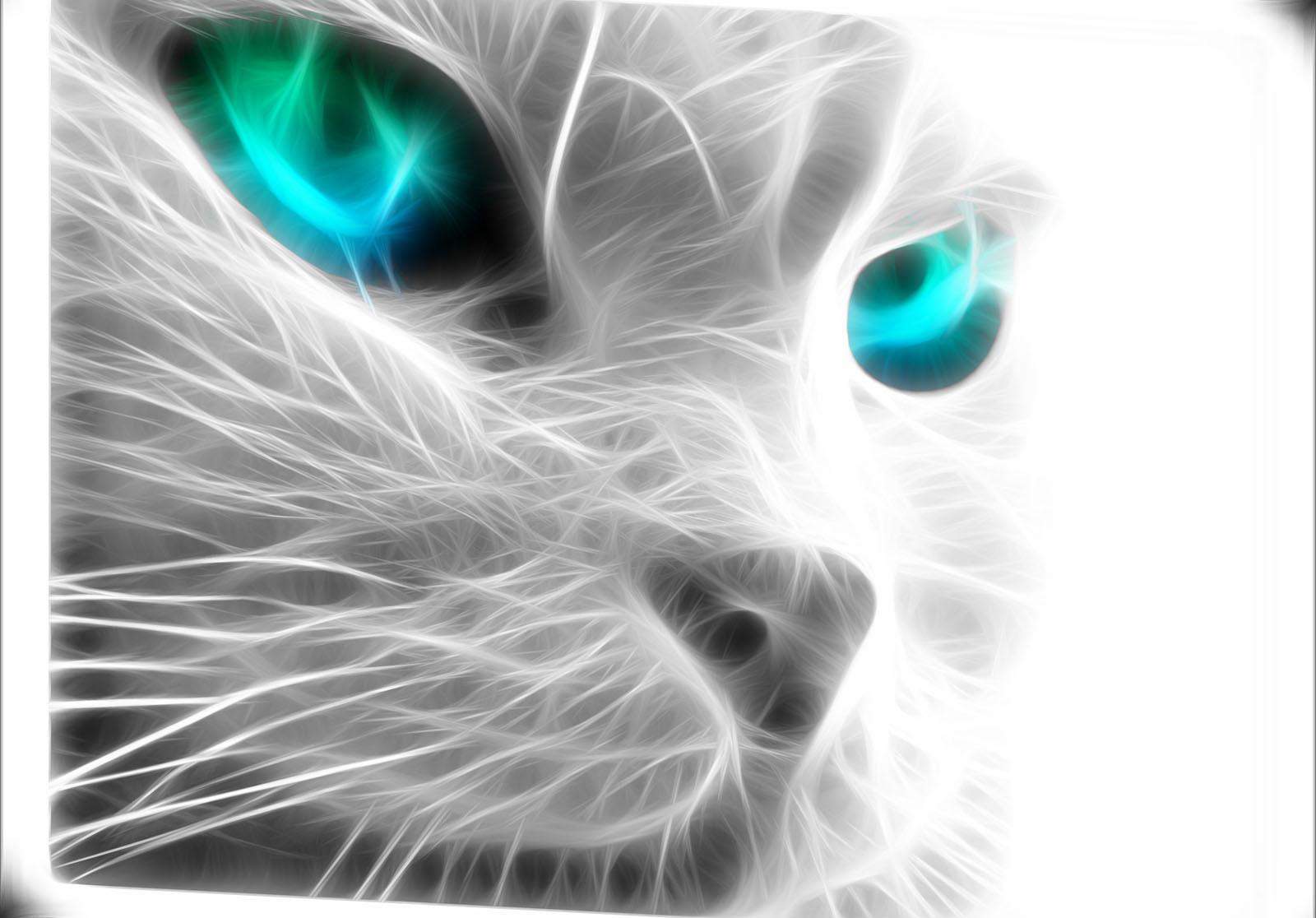 Zdarma zblízka kočička obrázky