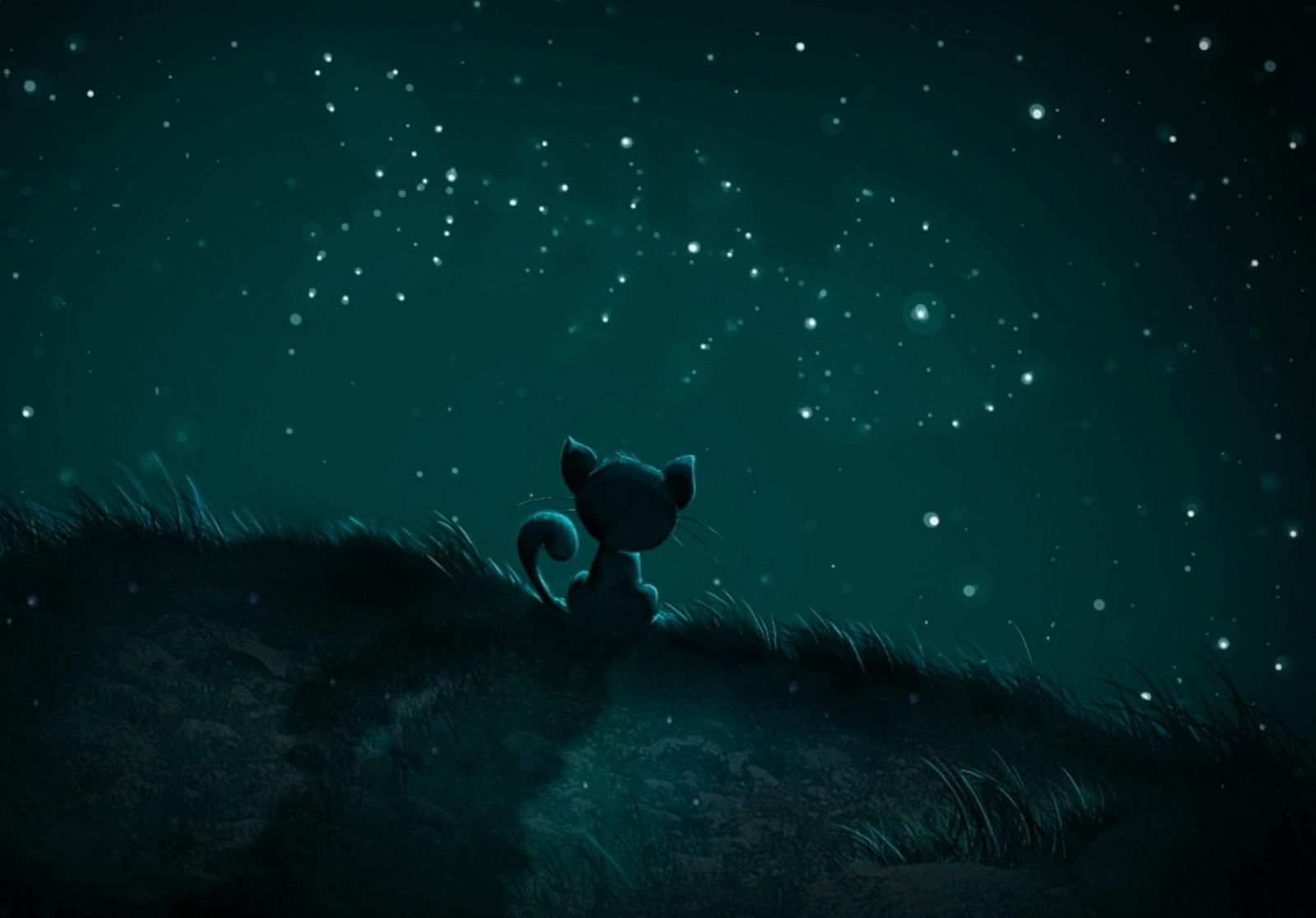 Смешные картинки про ночь и любовь, живые картинки анимационные