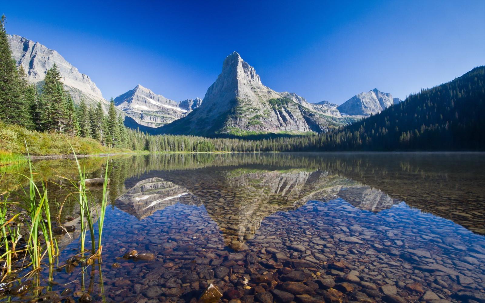 Wallpaper trees landscape forest lake nature - Glacier national park wallpaper ...