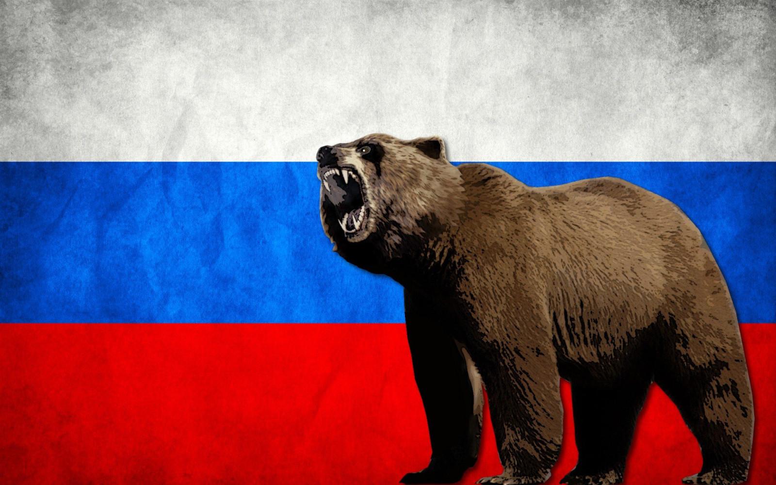 так картинка мишка россия меня косяков