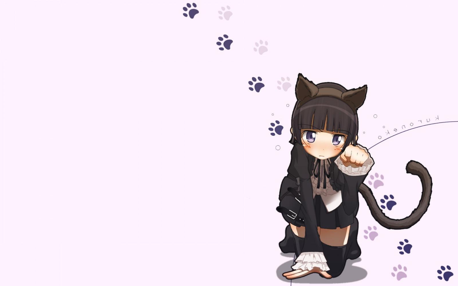 Sfondi illustrazione anime ragazza gatto cartone