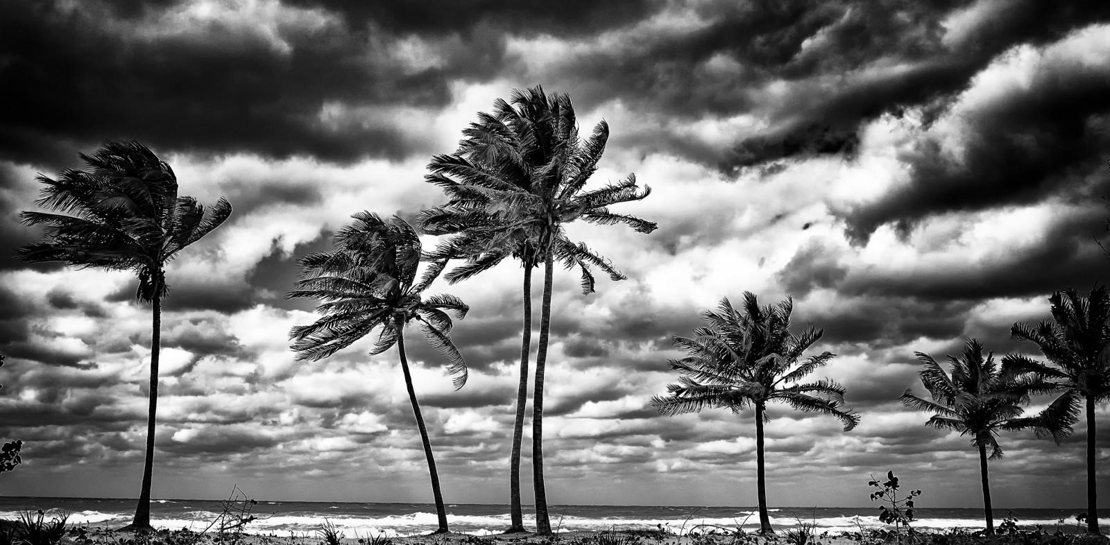 Wallpaper : trees, landscape, dark, sea, water, nature ...