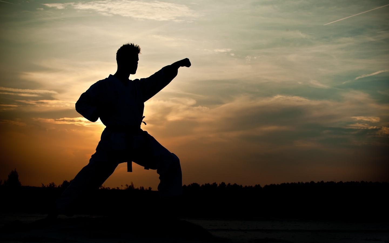 Men Sunlight Trees Sunset Nature Silhouette Clouds Evening Morning Belt Outdoors Dusk Kimono Martial Arts