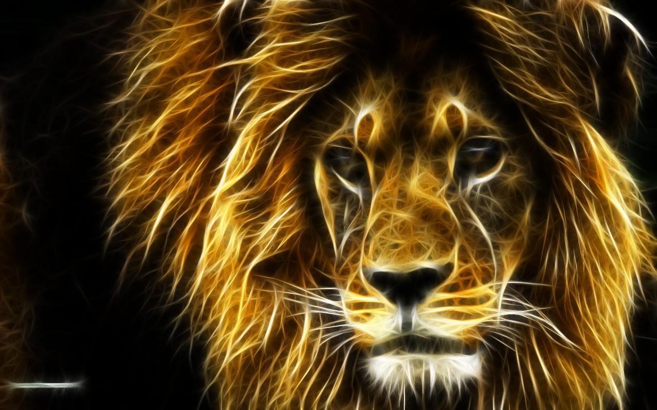Hd Animal Wallpapers Wild Life Download Lovely Pet Best: Sfondi : Tigre, Leone, Grandi Gatti, Barba, Ruggito, Fauna