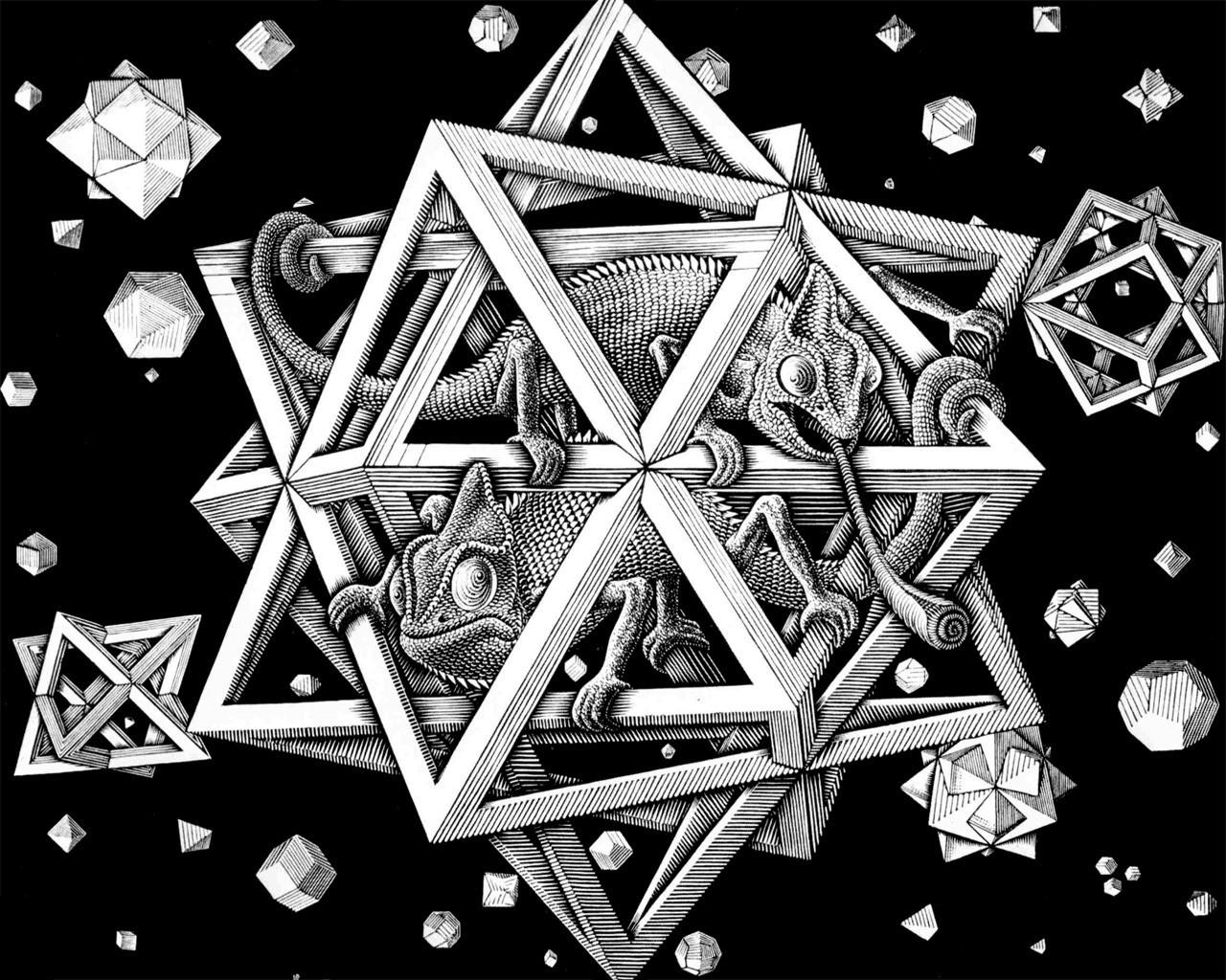 Disegni Geometrici Bianco E Nero sfondi : disegno, illustrazione, arte digitale, animali