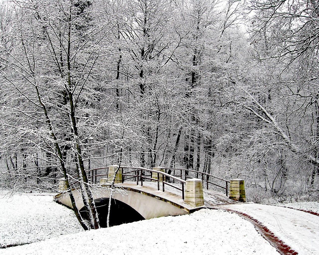 зимняя мостовая картинки сожалению, вашему