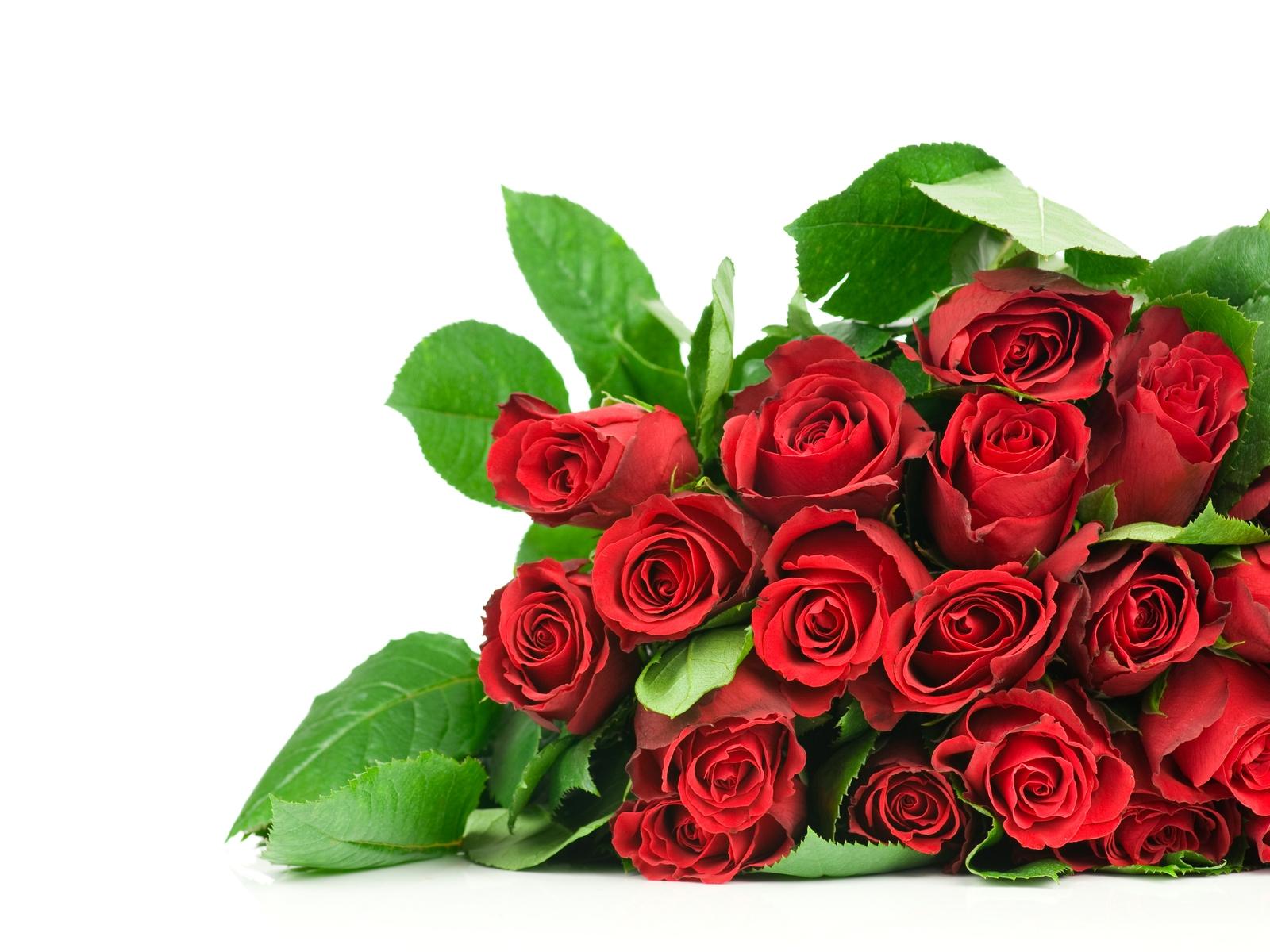 Mazzo Di Fiori Elegante.Sfondi Rosso Fiore Rose Mazzo Petalo Elegante Tanto