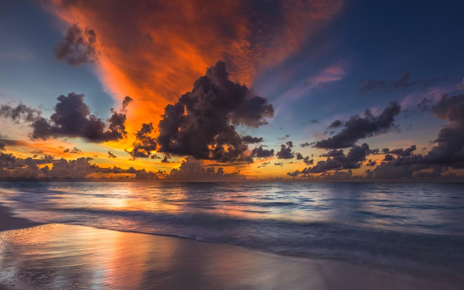 антисептик каждый постер рассвет океан один