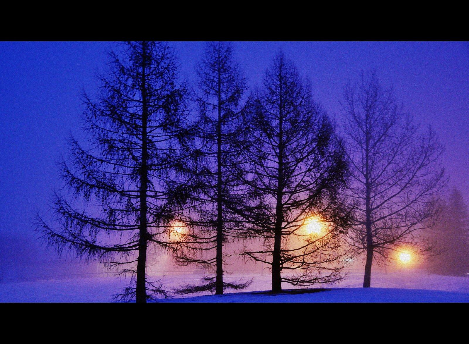 женский знак, вечером синим вечером лунным Благослови, душе моя