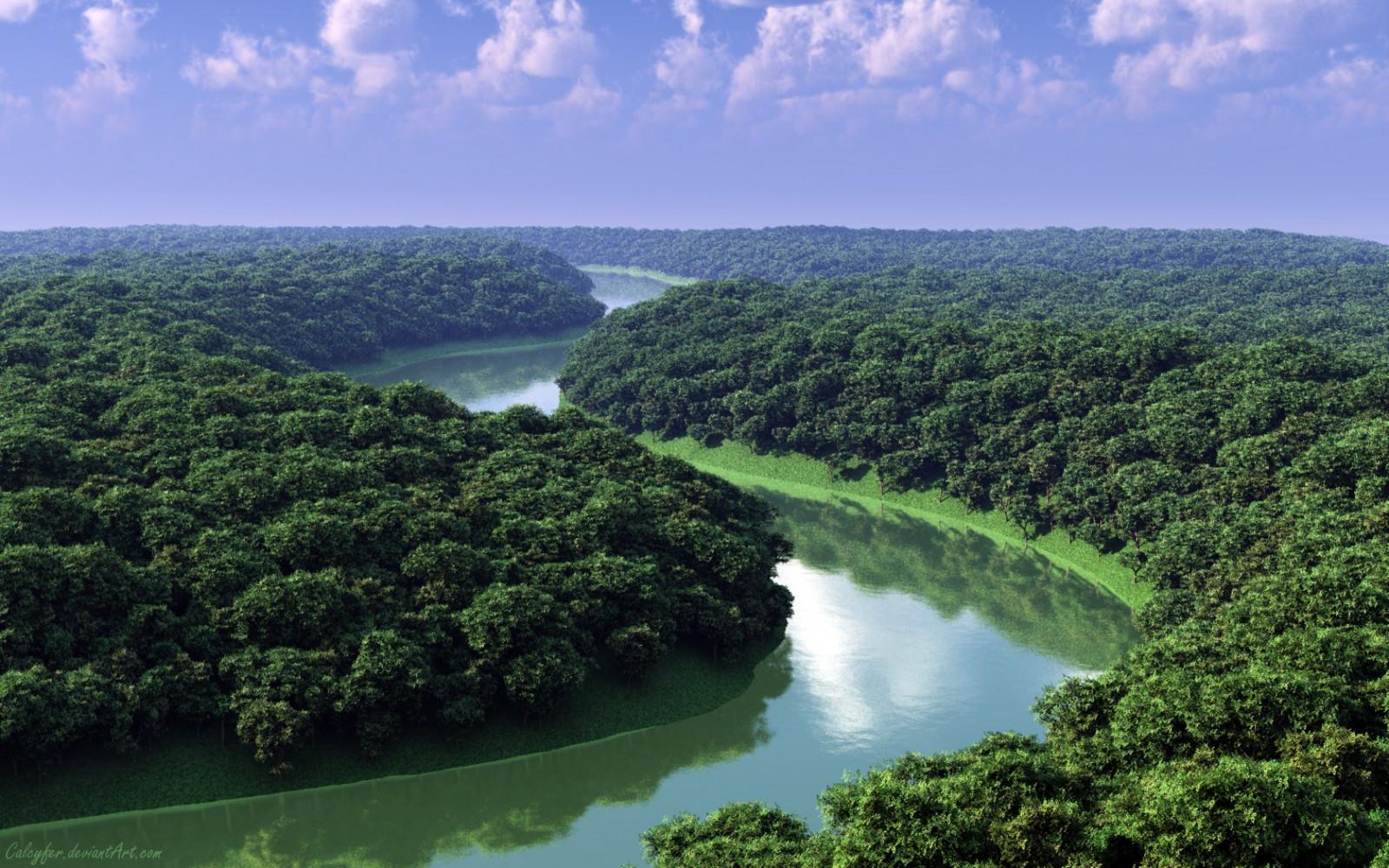 пейзаж лес Холм воды природа Река Джунгли Тропический лес Дерево Растительность Резервуар естественная среда окружающая среда Атмосферное явление Географический объект аэрофотосъемка Экосистемный водное пространство