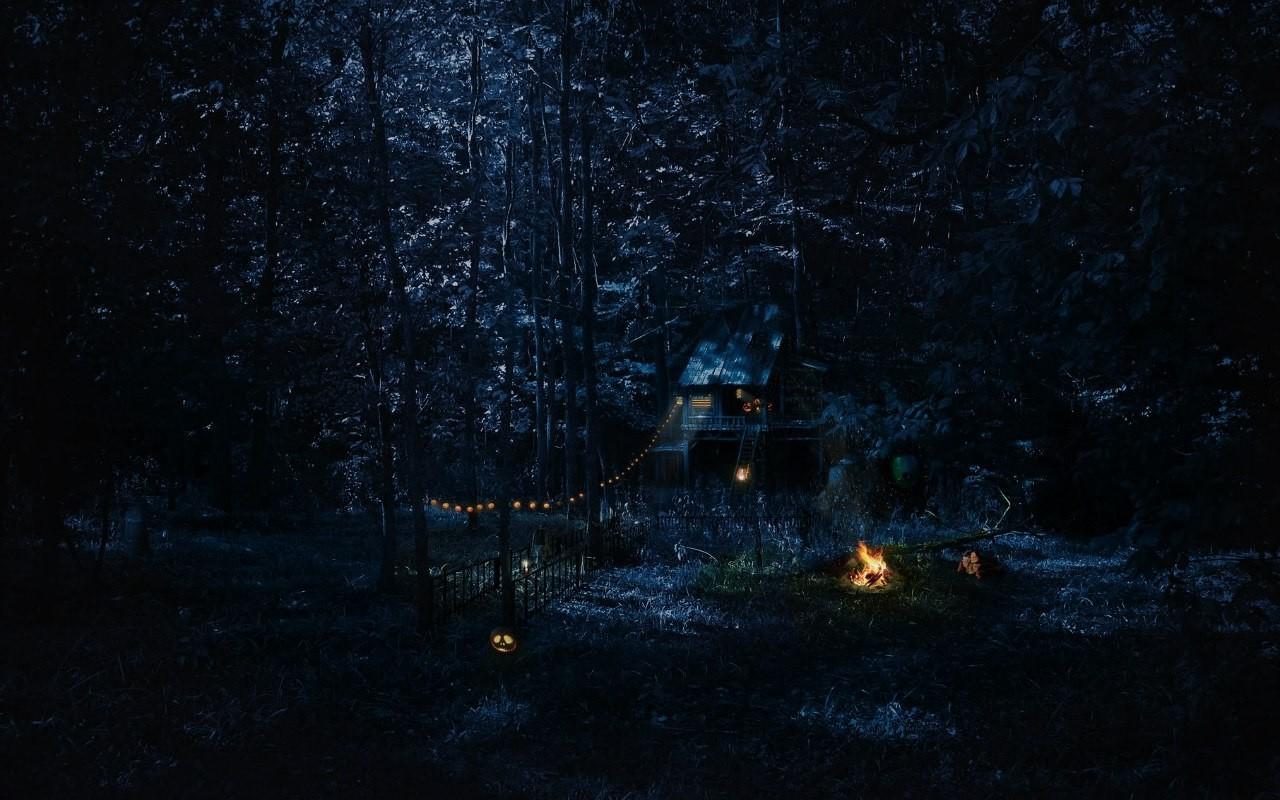 Simple Wallpaper Night Evening - 1280x800_px_Cabin_Campfire_forest_night-519167  Snapshot-901189.jpg!d