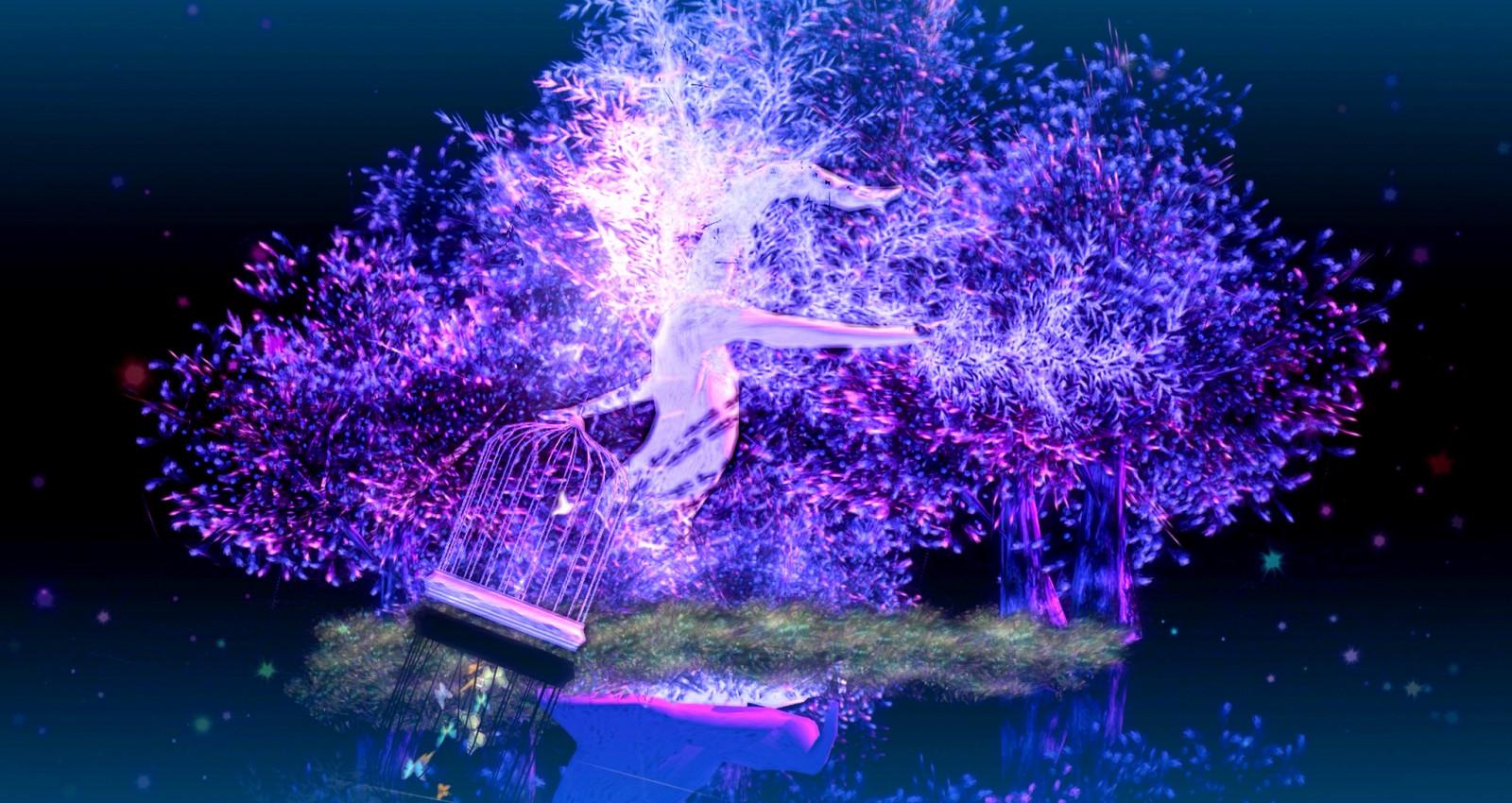3d Weihnachtsbeleuchtung.Hintergrundbilder Bäume Photoshop Vögel Nacht Wasser 3d