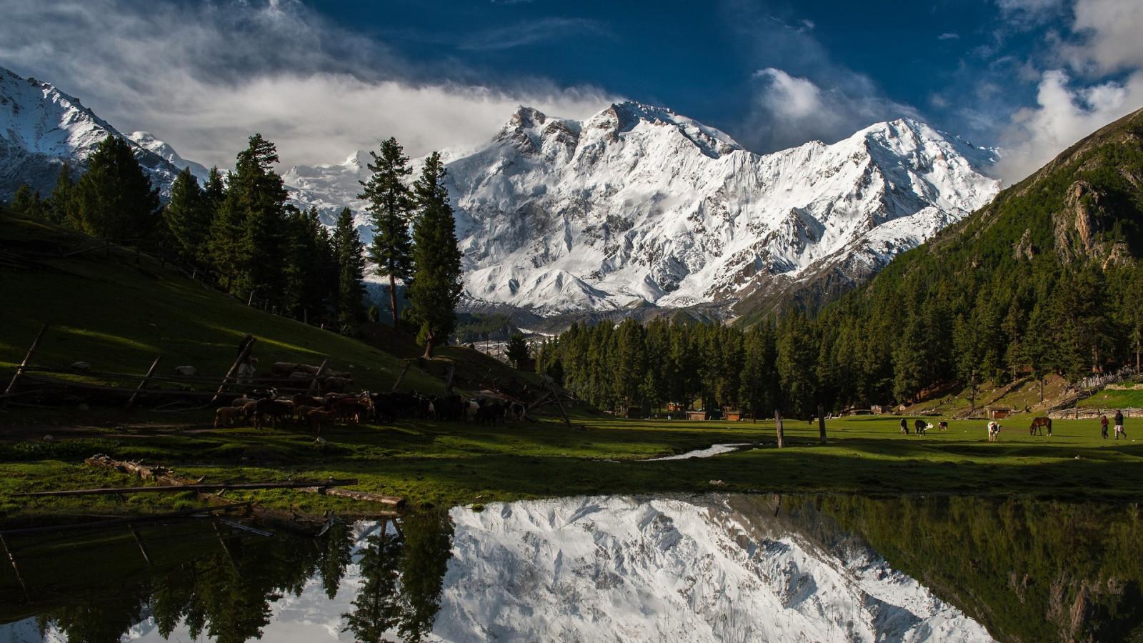 картинки красивых горных местностях платину часто