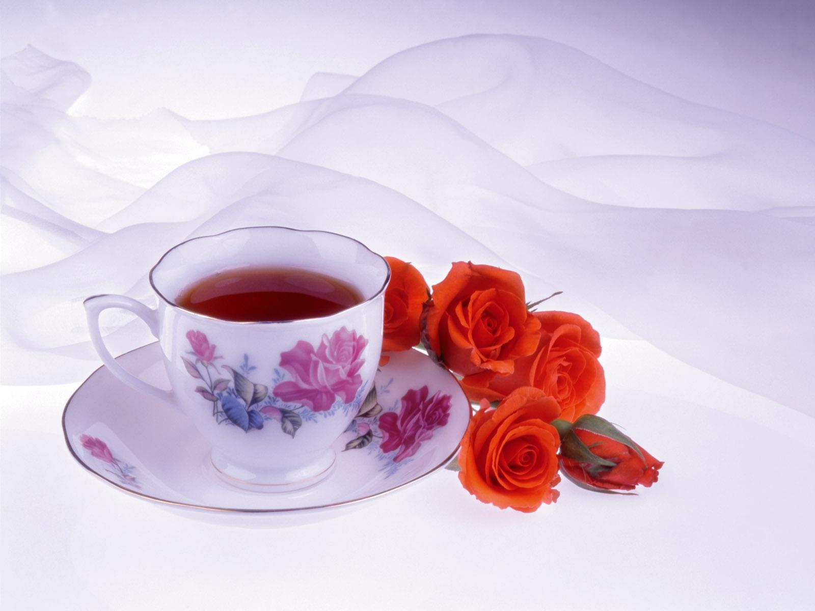 Фото цветов с добрым утром